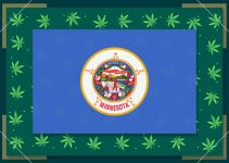 Growing Marijuana in Minnesota – State Laws (2020)