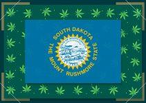 Growing Marijuana in South Dakota – State Laws (2021)