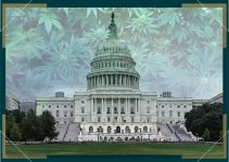 US Congress Votes on Lifting Federal Ban on Weed