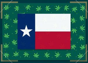 Growing Marijuana in Texas – State Laws 2021