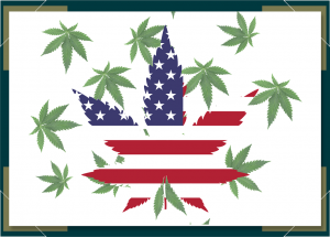 Marijuana Legalization Laws to Look for in 2021