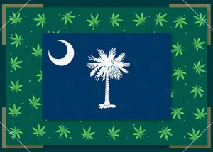 Growing Marijuana in South Carolina – State Laws (2021)