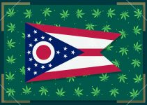 Growing Marijuana in Ohio – State Laws 2021
