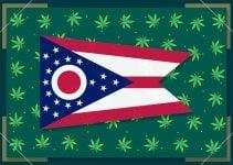 Growing Marijuana in Ohio – State Laws 2021